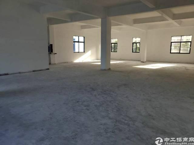西乡海滨新村独门独院厂房2400平标准厂房出租