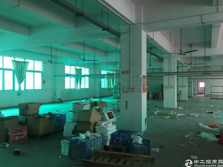 横岗安良物业直租1280平米厂房带装修