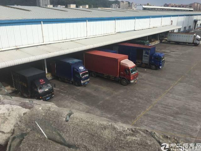 石岩松白路机荷高速口新出2000平10米高钢结构