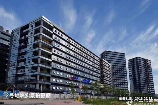 新建50万平方红本厂房分割买卖