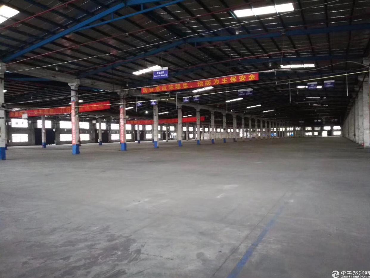 大亚湾全新钢构厂房18000平,大小分租