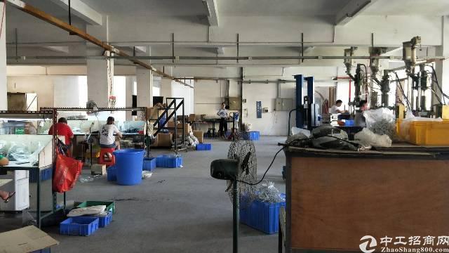 石排镇标准厂房面积实打实量有意者随时咨询地段优质