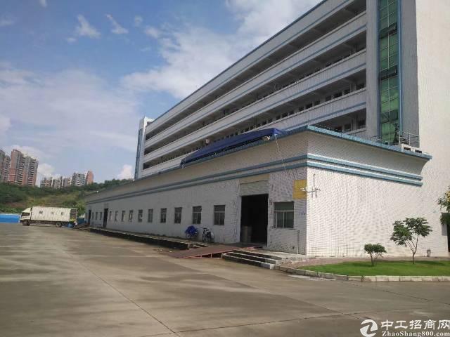 陈江镇标准厂房招租