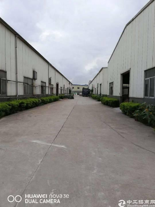 新圩东风独院钢构8600平方米出租