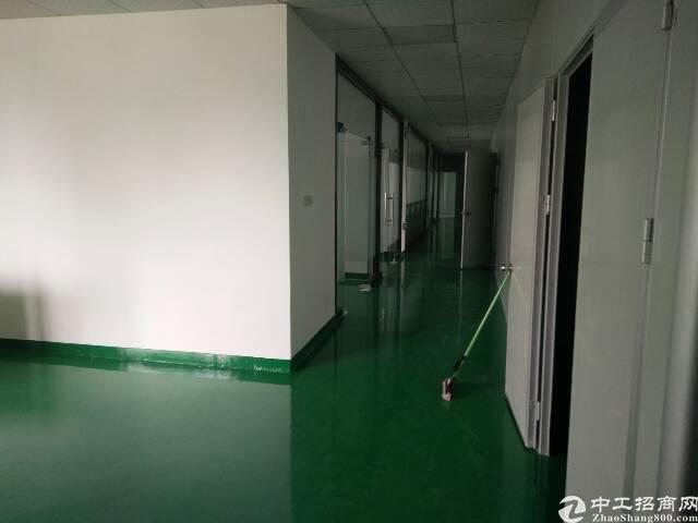 公明田寮大型工业园精装修1500平厂房招租