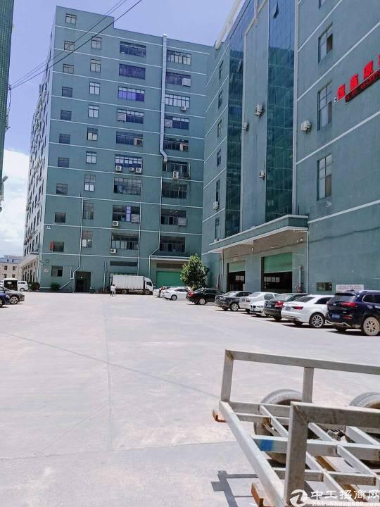 公明楼村大型工业园楼上平方1150平方出租