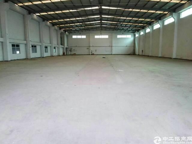 坪山石井市场比亚迪附近钢结构厂房1300平