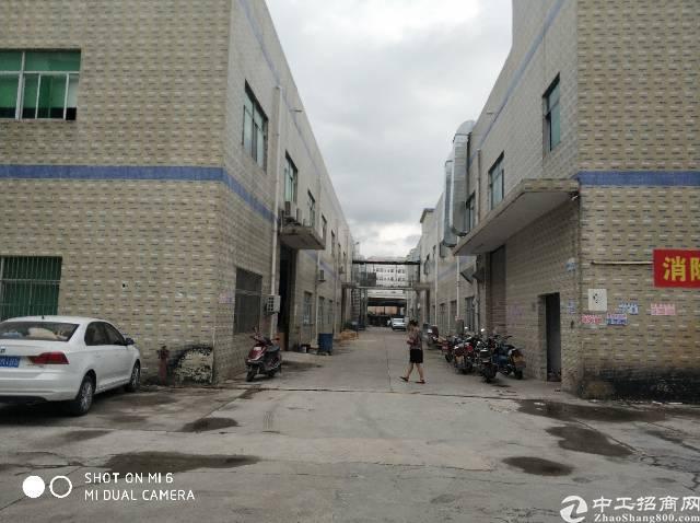 工业园内标准厂房二楼1000平米招租