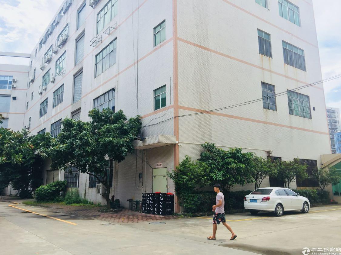 龙华大浪原房东独栋厂房10000平米,带现成豪华装修出租。