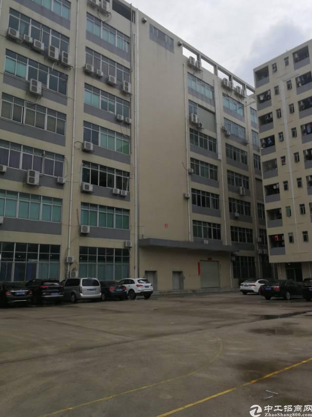 凤岗镇五联新出带办公室标准厂房3楼2000平