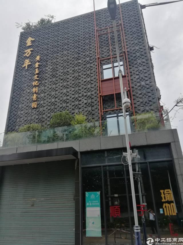 坪山坑梓中心黄金珠宝展厅500平出租