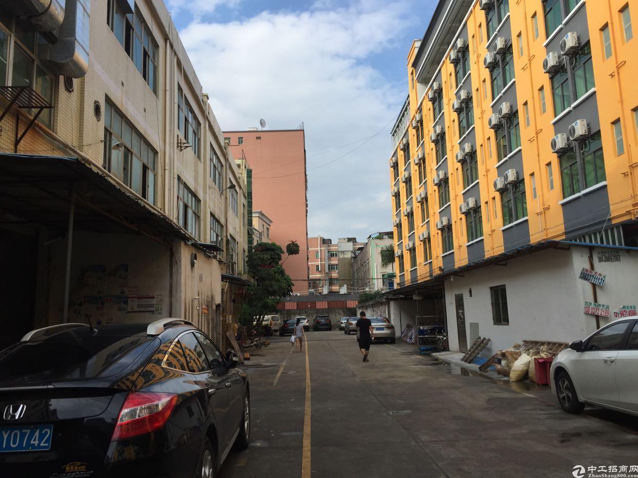 观澜大布头旁边有个一楼的标准厂房带有办公室装修的厂房出租
