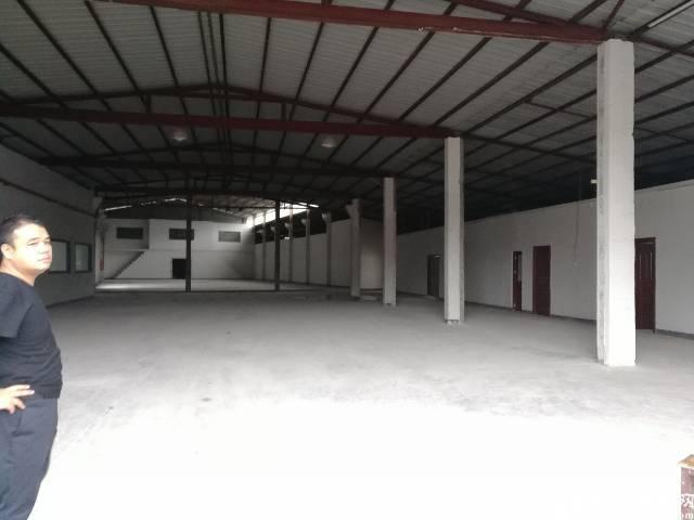 环观南路辅城坳附近带卸货平台钢构厂房1500平,滴水6.5米