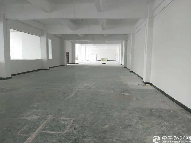 横岗 四联一楼整层1600平方可做物流快递五金加工等行业!