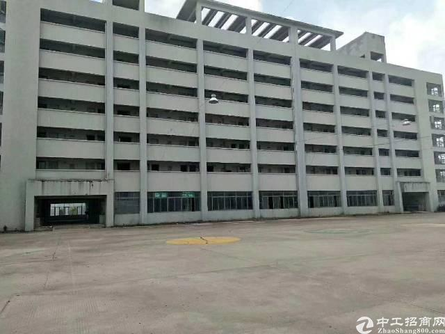 坂田杨美地铁站500米新出带精装修电商产业园大小分租