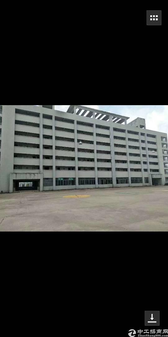 布吉南岭新出5万平厂房,零公摊,有红本,消防喷淋,随意分租