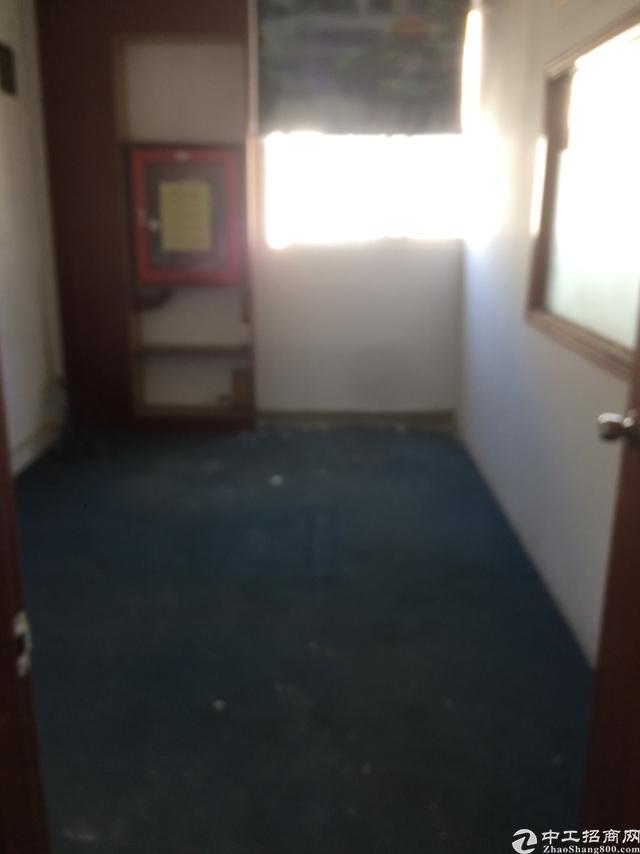 西丽南山标准厂房办公室出租面积实在-图3