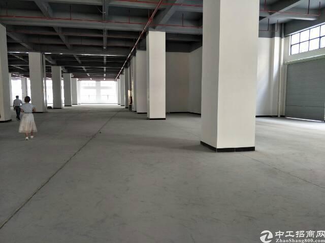 公明楼村新出厂房一楼高度7米标准厂房