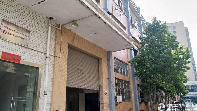 沙井新桥高速路口附近大型工业园新出装修厂房出租楼上990平