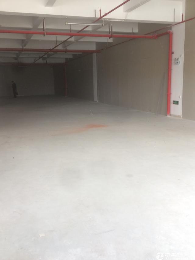 西丽南山标准厂房办公室出租面积实在-图10