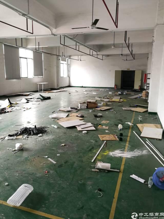 公明龙大高速楼村大型工业园5楼1650平方带装修厂房出租
