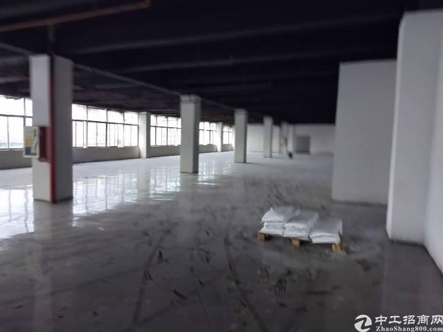 坂田雪象附近新出厂房20000平可分租带喷淋有红本
