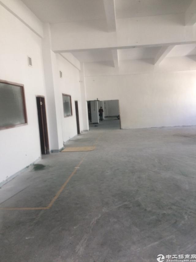 西丽南山标准厂房办公室出租面积实在-图9