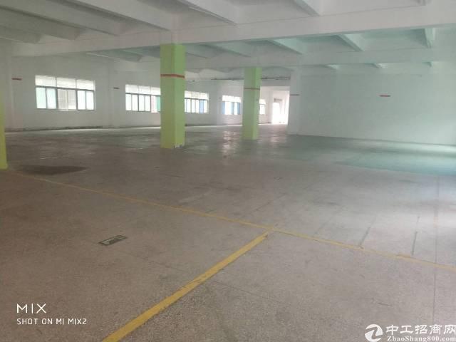 平湖輔城坳带装修独院4200平方厂房房东急租
