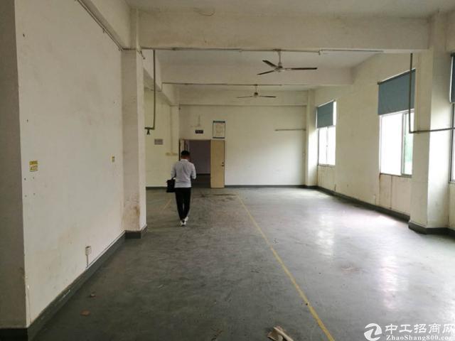 西丽南山标准厂房办公室出租面积实在-图6