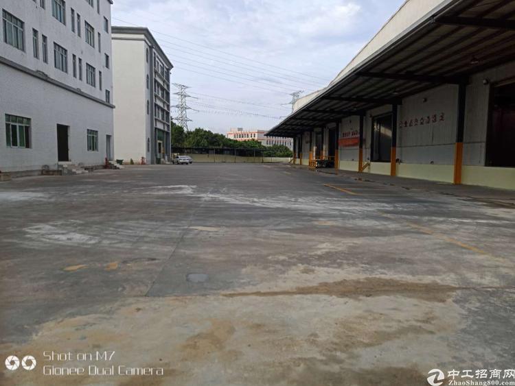 新塘镇滴水10米高钢构单一层独院厂房