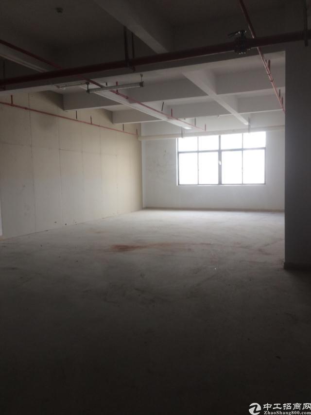 西丽南山标准厂房办公室出租面积实在-图4