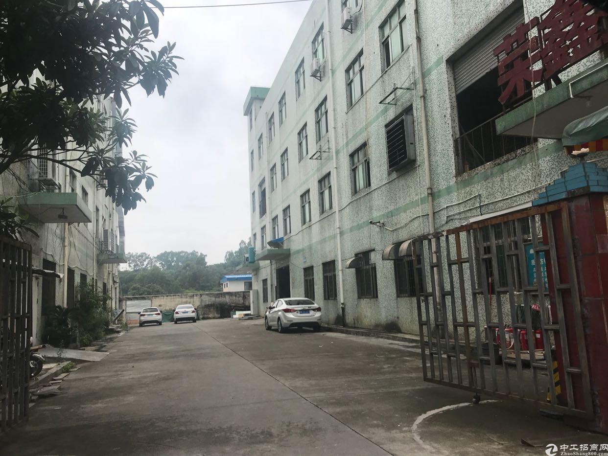 龙华大浪商业中心附近独栋厂房出租
