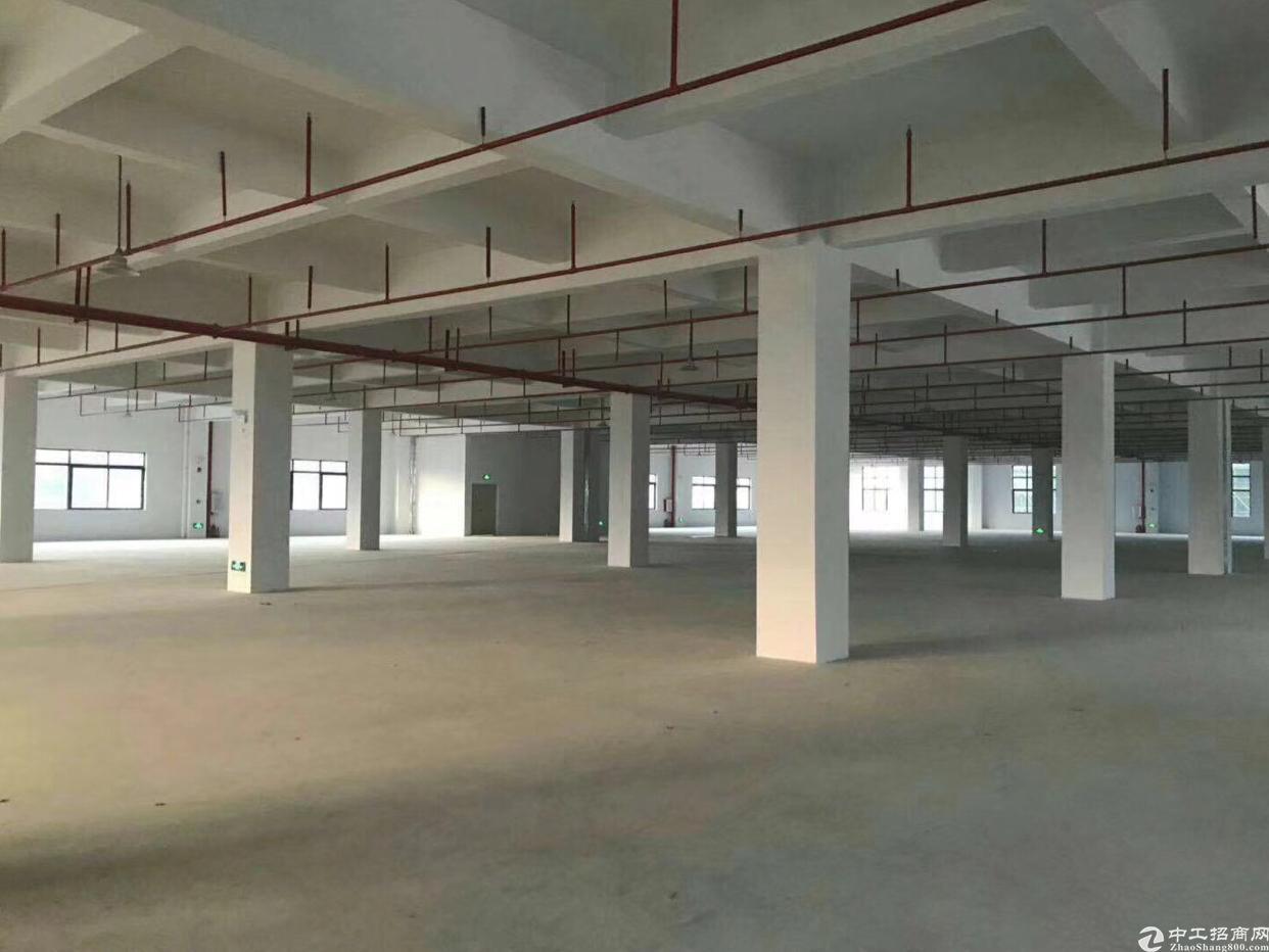 坑梓 丹梓大道旁大型工业区一楼整层实际面积5200平