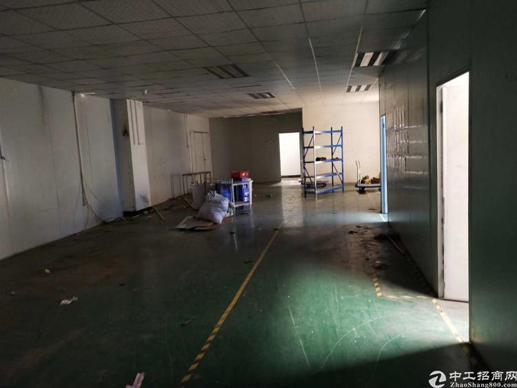 福永凤凰107国道边一楼厂房500平