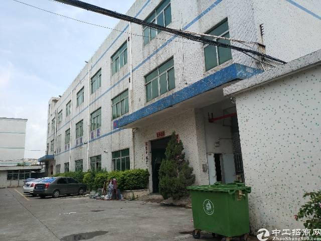 坪山坑梓独院标准厂房出租4500平 面积实在