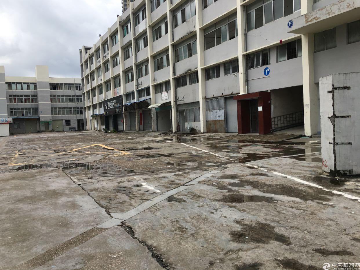 布吉南岭电商园实际面积出租360-2000平方租金不递增