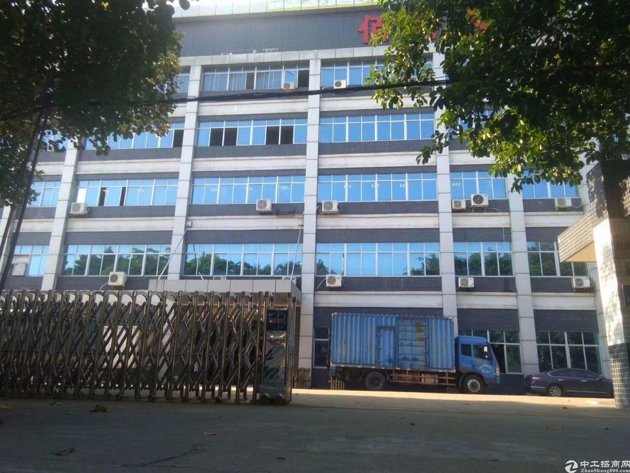 坪山高新区标准厂房一楼滴水十米厂房出租