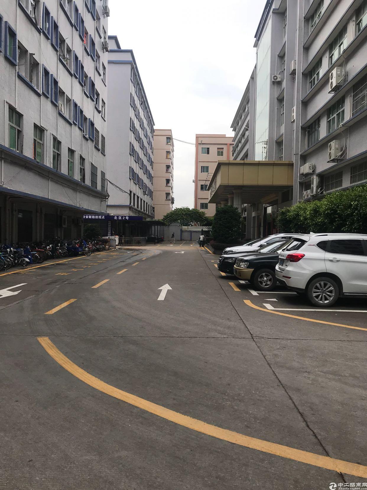 坂田上雪科技园新出一楼带精装修850平厂房出租