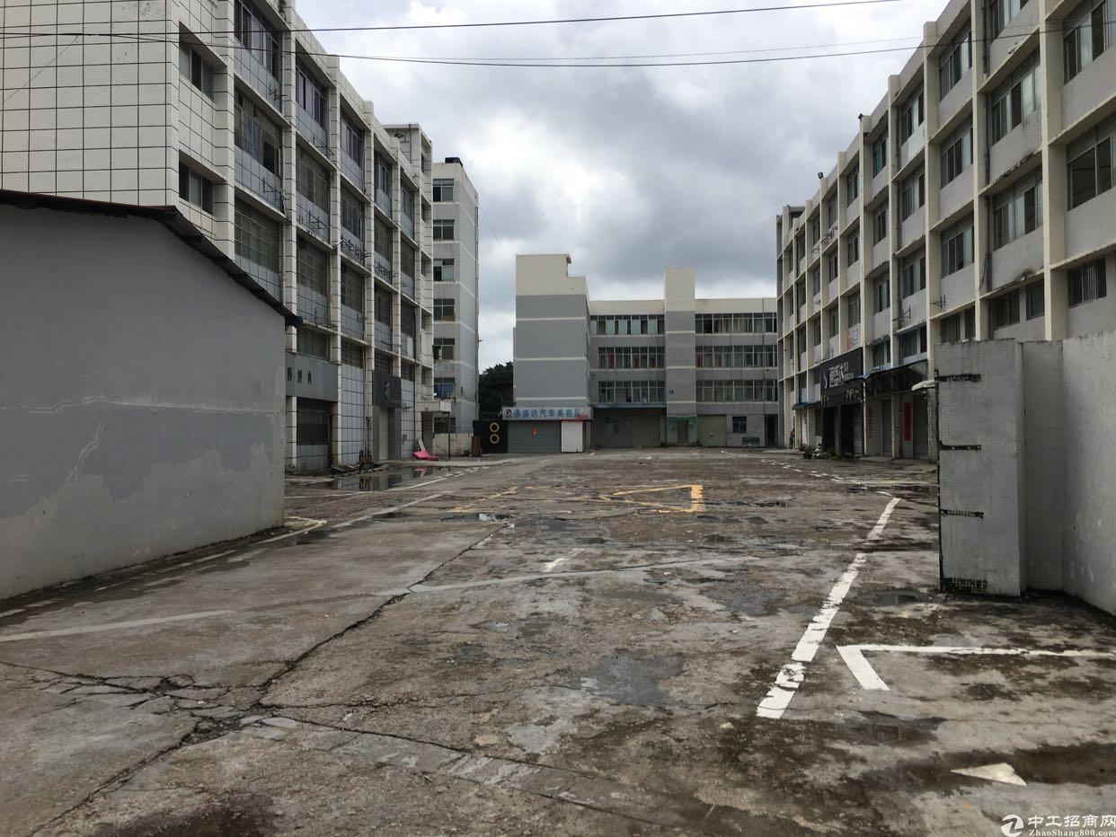 布吉关口南岭一楼2000平方实际面积出租不分租