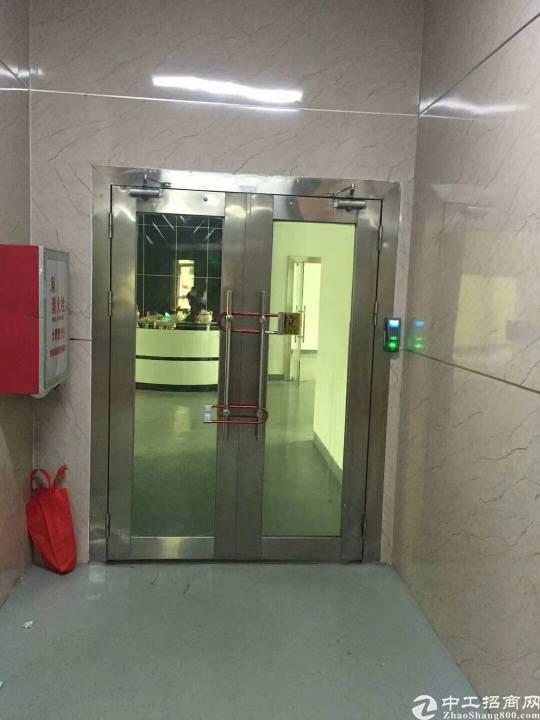 凤岗镇凤德岭新出带办公室、地坪漆二楼标准厂房1000平