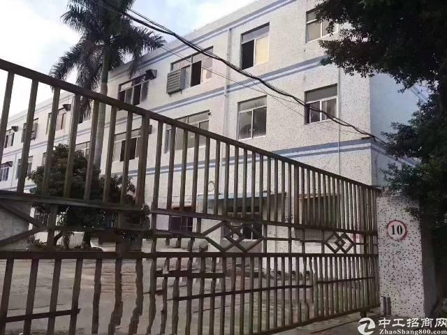 沙井107附近独门独院:1-3层4500平招租