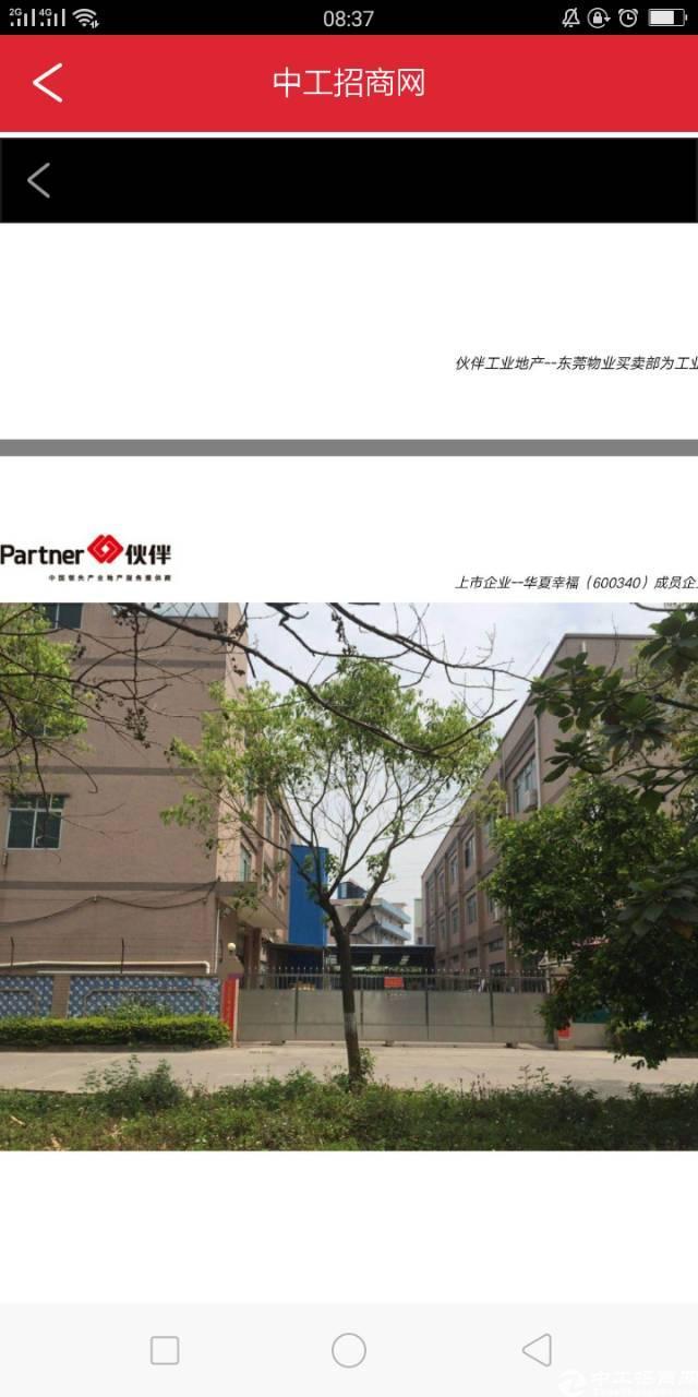 东莞带小公园的厂房低价出售