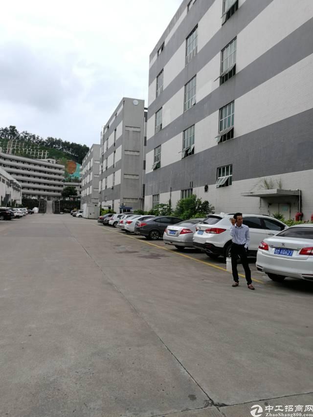 横岗安良独门独院面积4215平米标准厂房招租