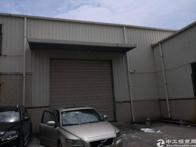 沙井共和新出一楼7.5米高钢构厂房