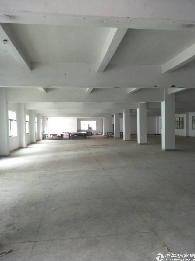 黄江镇板湖新出楼上3300平标准厂房出租