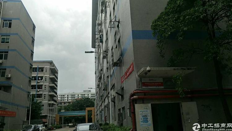 福永塘尾地铁口附近新出楼上二千平方厂房出租-图3