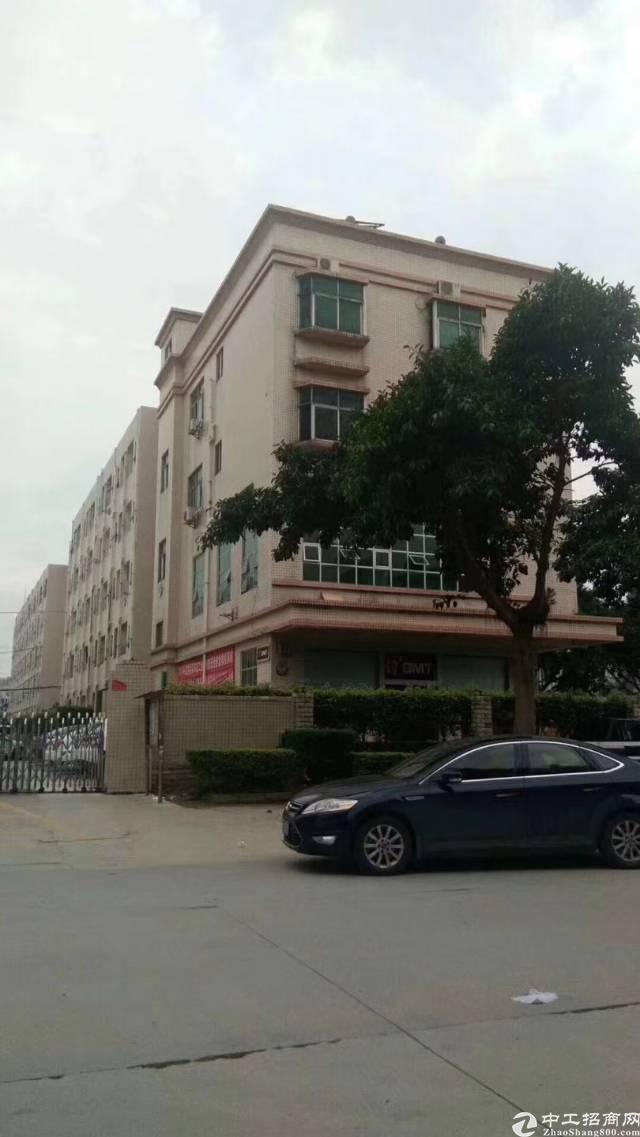 出租共和办公楼1200平米4层