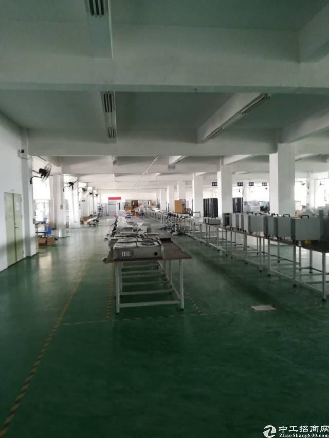 沙井洪田大型工业园厂房招租-图2