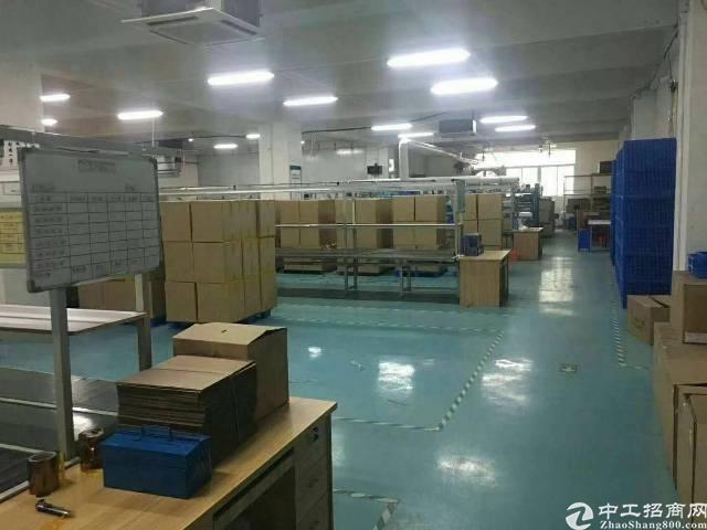 沙井新桥高速出口新出厂房1400平方