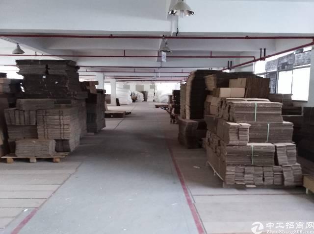 大亚湾工业园600平分租 有红本有消防有宿舍 电按需